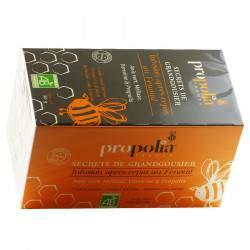 Infusion après-repas au fenouil - Propolia