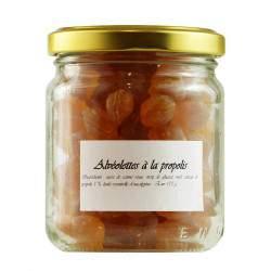 Bonbons alvéolettes à la propolis, au pollen saveur eucalyptus